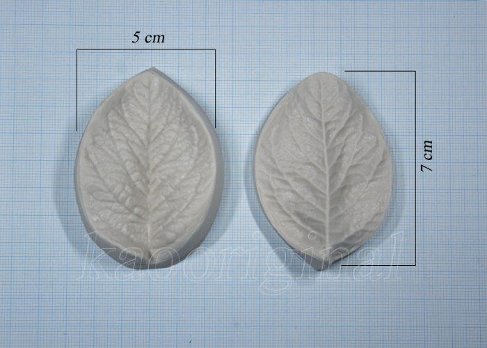 2071 Arabian jasmine leaf