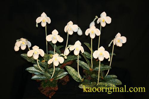 Paphiopedilun Dalentii clay flower