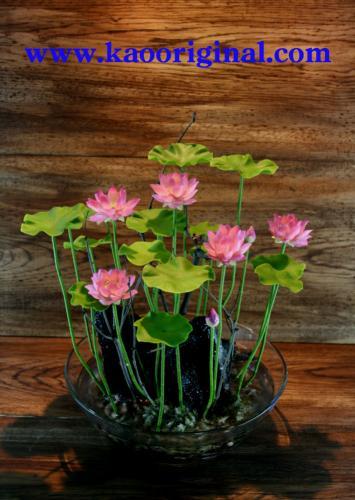 1024 Nelumbo nucifera flower (1)