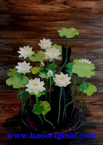 Nelumbo nucifera flower 1025 (10)