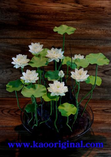 Nelumbo nucifera flower 1025 (11)