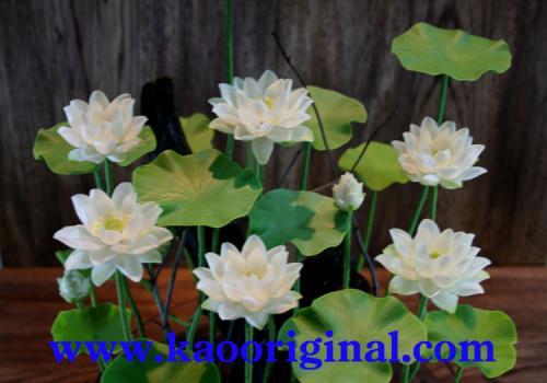 Nelumbo nucifera flower 1025 (14)