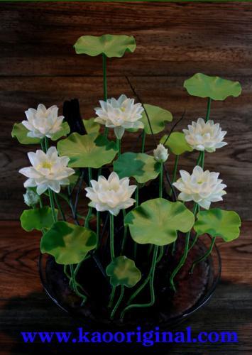 Nelumbo nucifera flower 1025 (8)